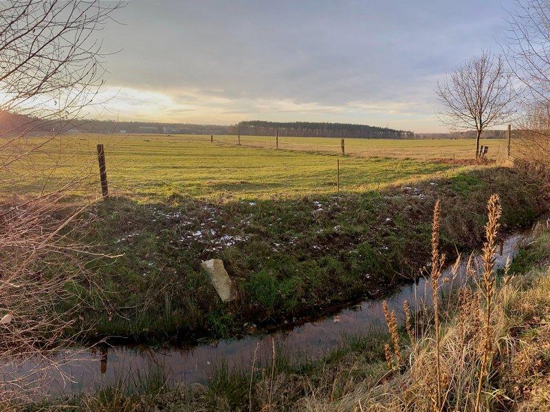 Landwirtschaft Hoyerswerda Lausitz